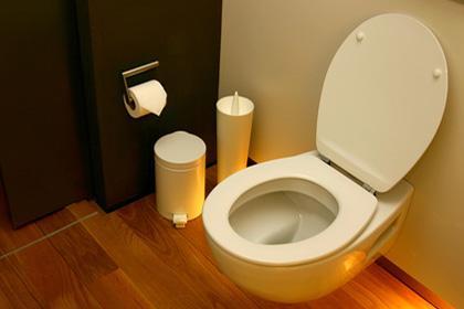 Les différents types des toilettes
